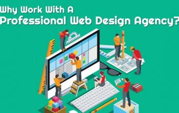why-work-with-a-professional-web-design-agency